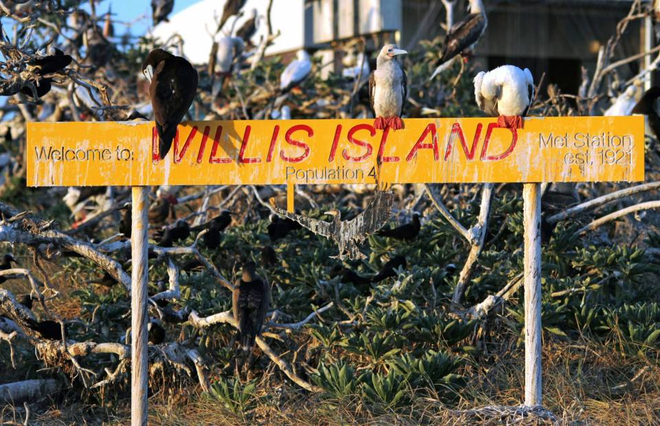 Welcome to Willis Island: Population 4